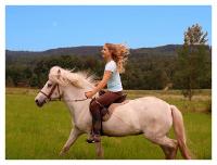 paardrijdenekwr